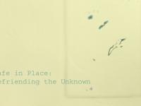 Befriending the Unknown